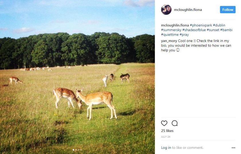 Best locations to go for a run in Ireland # 5: Phoenix Park, Dublin