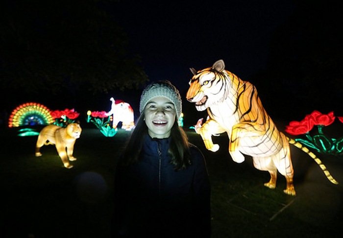 Autumn-dublin-zoo-wild-lights.jpg